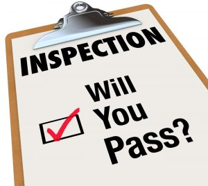 Mold Inspection in San Diego Are A Must for Any Real Estate Transaction