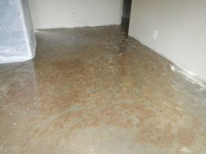 water damage health risks